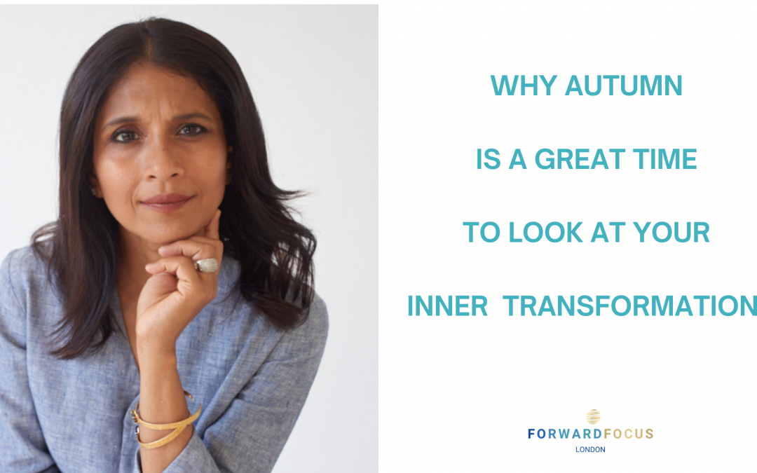 Why Autumn is a great time to look at your inner transformation?